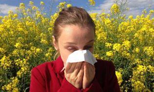 Wiosna – trudny okres dla alergika. leki na alergię i sposoby jej łagodzenia