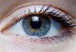 jaskra choroba oczu