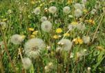 sposoby leczenia alergii