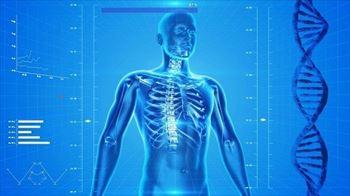 leki układ kostny
