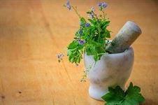 Tradycyjne produkty lecznicze roślinne