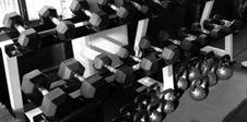 Sztangielki na siłowni