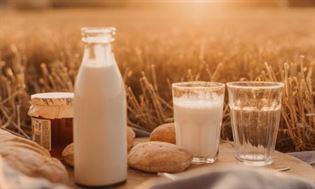 Co to jest osteoporoza? Najlepsze źródła wapnia w profilaktyce osteoporozy