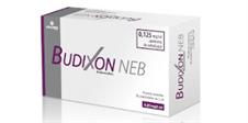 BUDIXON NEB