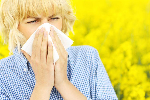 alergia jovesto