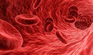 Cholesterol – zły czy dobry?