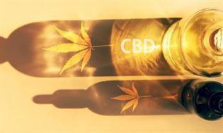 Co to jest olej CBD? Jakie produkty najlepiej stosować?